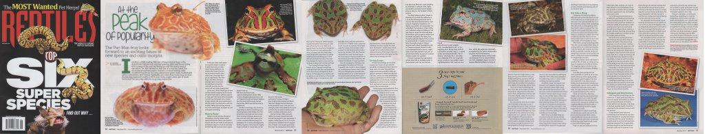 Reptiles-May-June-16